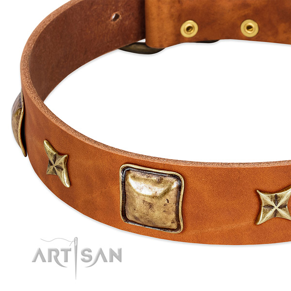 Rust resistant traditional buckle on leather dog collar for your pet
