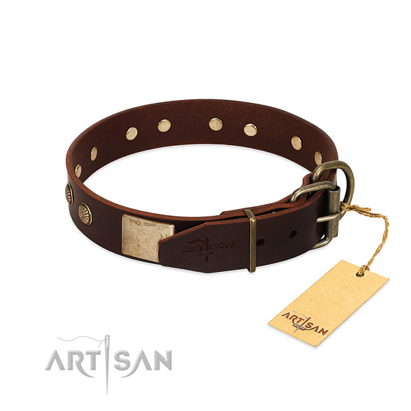 Reliable studs on stylish walking dog collar