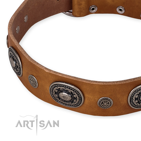 High quality full grain natural leather dog collar created for your attractive doggie