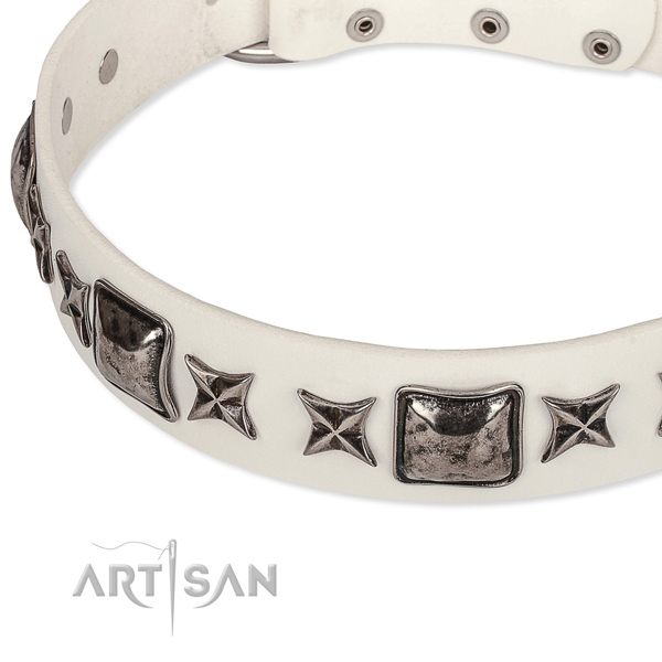 Fancy walking embellished dog collar of high quality full grain natural leather