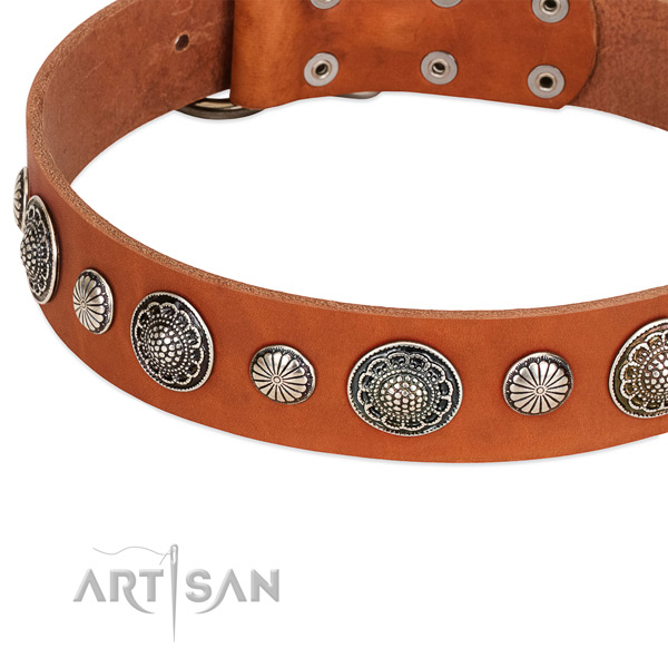 Genuine leather collar with rust-proof traditional buckle for your attractive doggie
