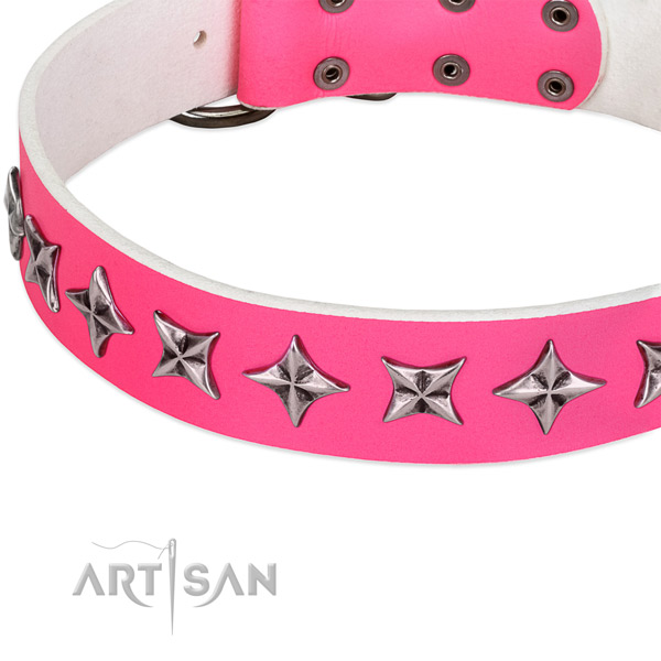 Everyday use decorated dog collar of best quality natural leather