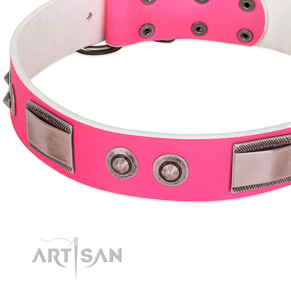 Trendy full grain leather collar with decorations for your dog