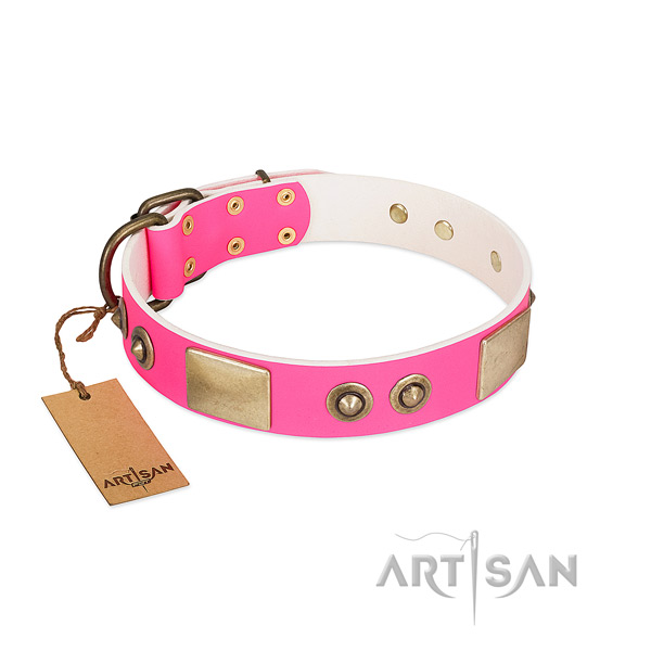 Rust resistant fittings on leather dog collar for your four-legged friend