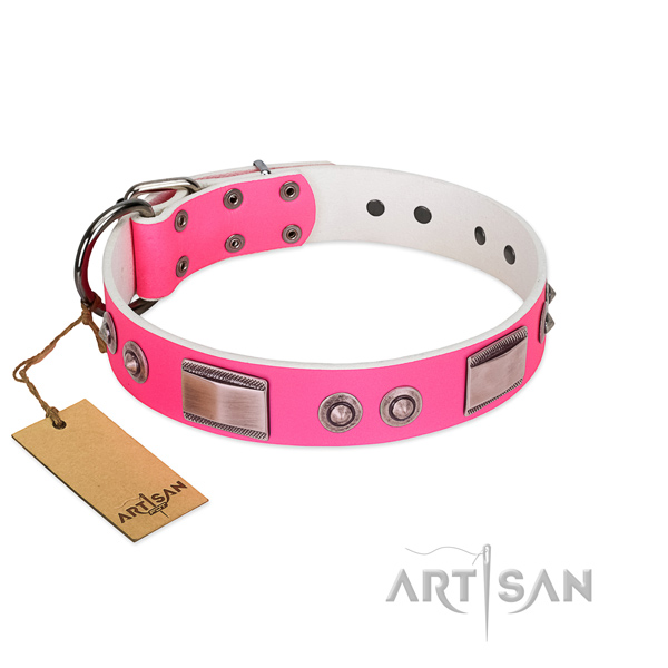 Significant natural leather collar with adornments for your dog