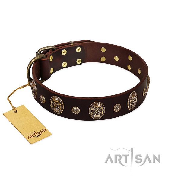 Studded genuine leather collar for your doggie