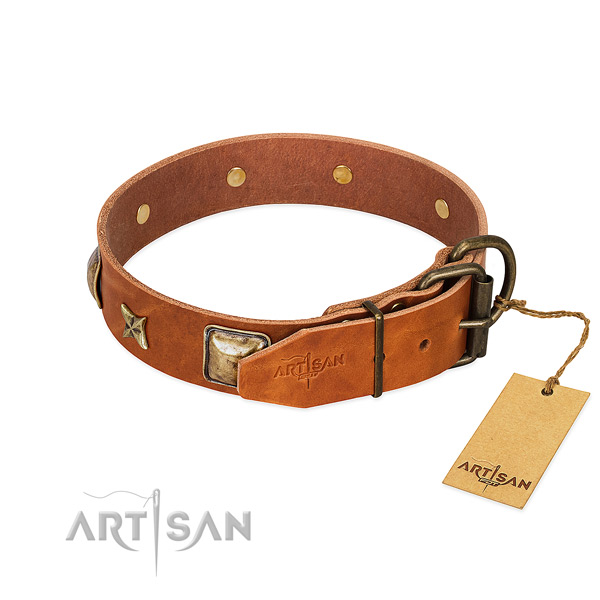 Leather dog collar with strong fittings and decorations