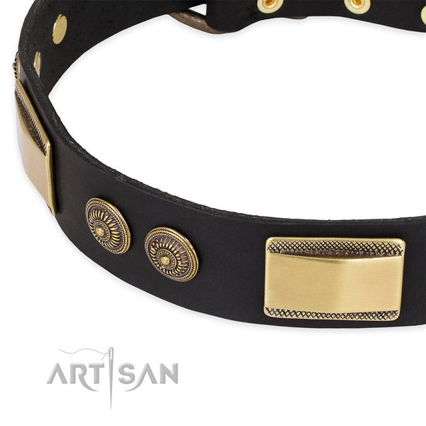 Embellished genuine leather collar for your handsome doggie