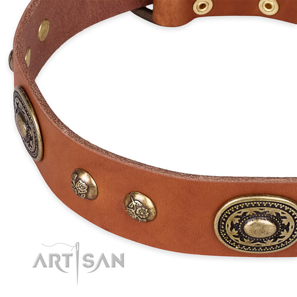 Exceptional full grain genuine leather collar for your lovely dog