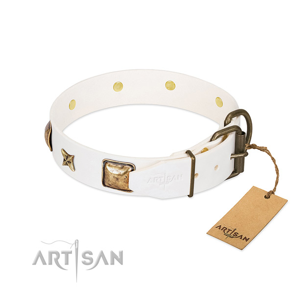 Full grain genuine leather dog collar with rust resistant fittings and studs