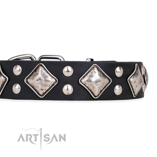 Full grain genuine leather dog collar with stunning corrosion proof adornments