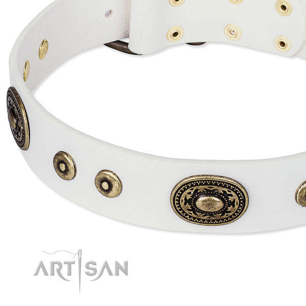 Full grain leather dog collar made of gentle to touch material with studs
