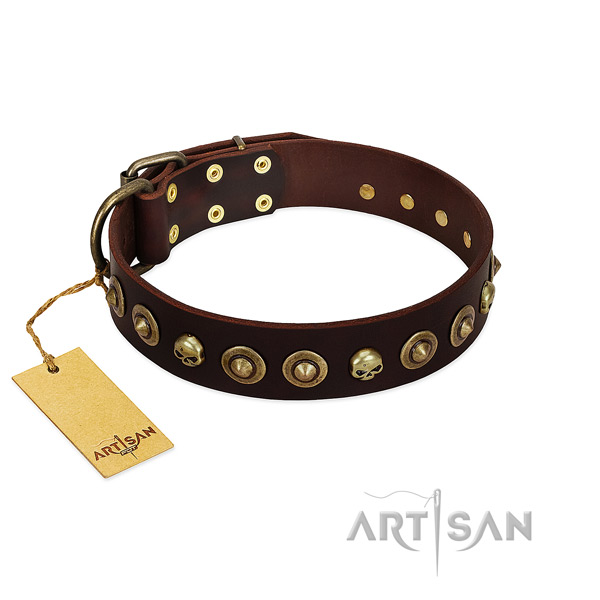 Natural leather collar with unique embellishments for your doggie