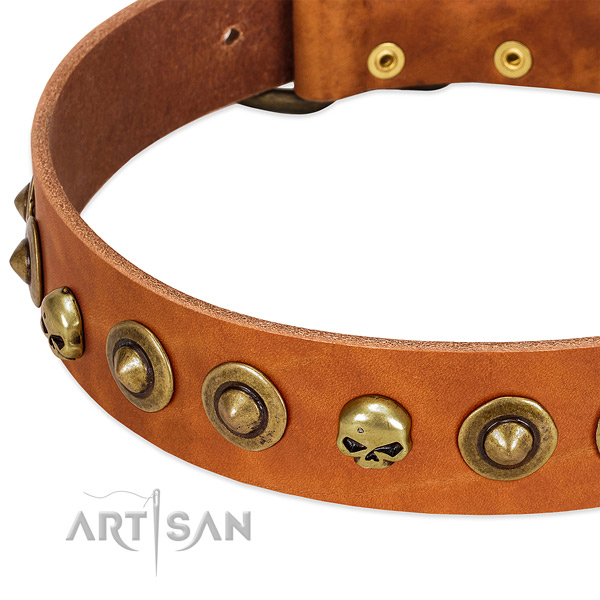 Exceptional studs on full grain genuine leather collar for your doggie