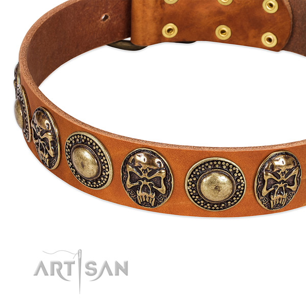 Durable embellishments on natural leather dog collar for your canine