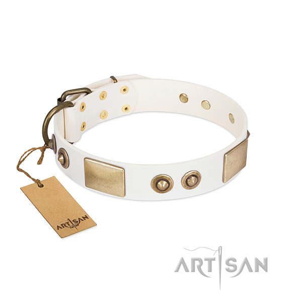 Corrosion proof adornments on full grain genuine leather dog collar for your pet