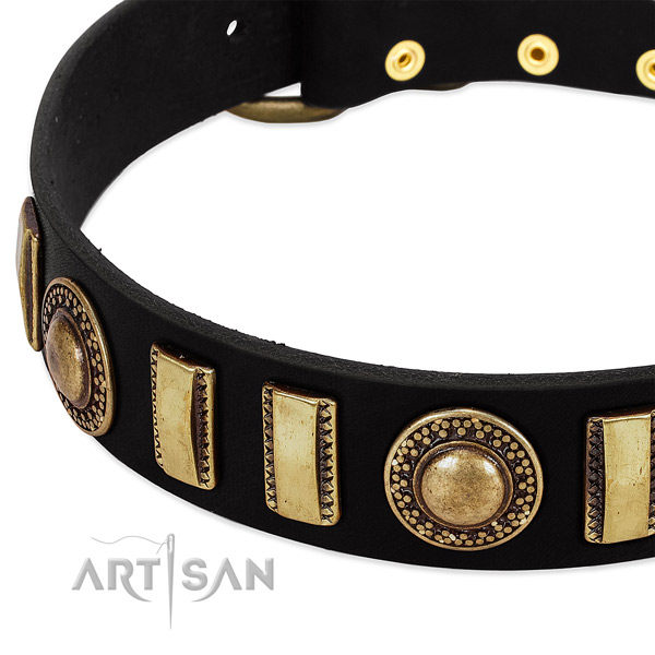 Gentle to touch leather dog collar with corrosion proof traditional buckle