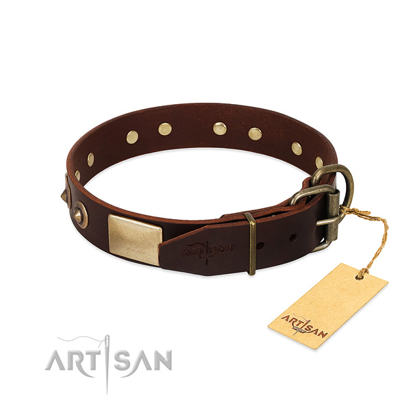 Rust-proof buckle on everyday use dog collar