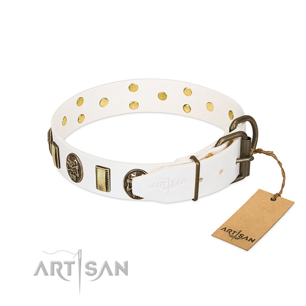 Reliable hardware on full grain natural leather collar for daily walking your four-legged friend