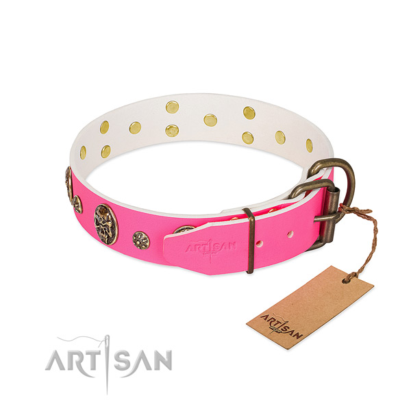 Durable fittings on genuine leather collar for fancy walking your doggie