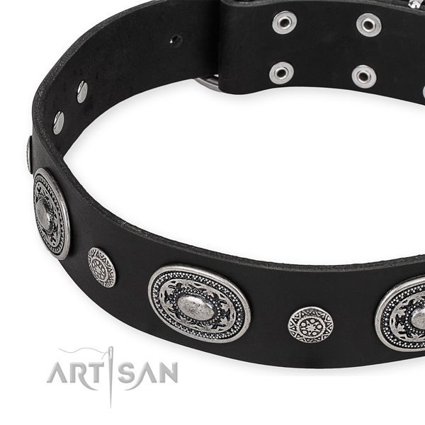 Top notch genuine leather dog collar crafted for your beautiful pet