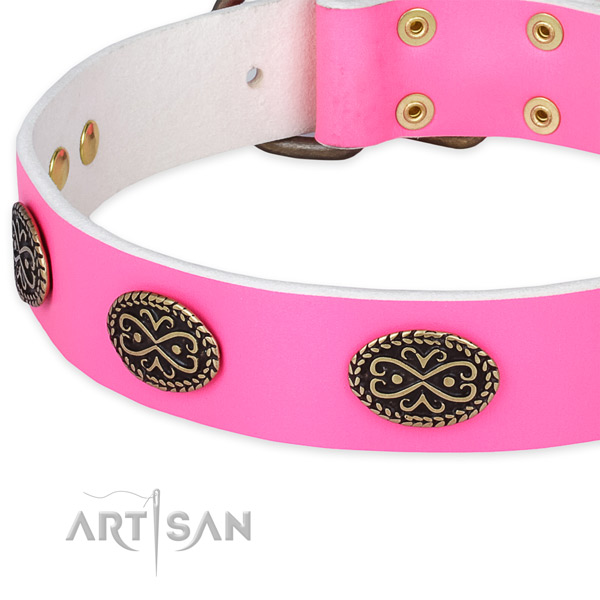 Leather dog collar with decorations for everyday walking