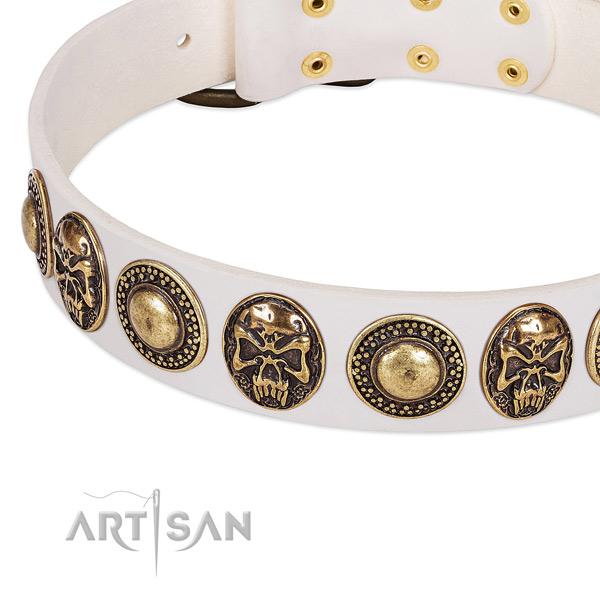 Corrosion proof adornments on genuine leather dog collar for your canine