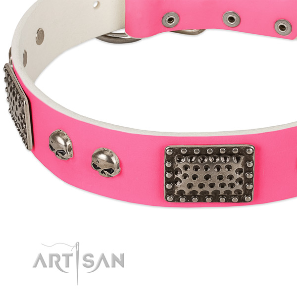 Rust-proof studs on leather dog collar for your canine