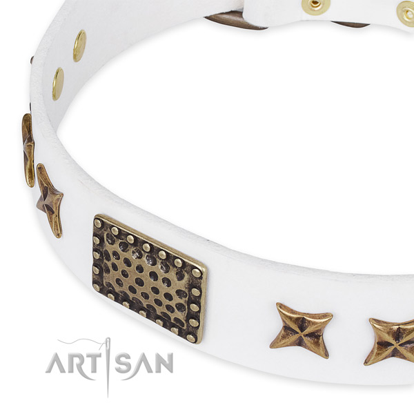 Full grain leather collar with reliable fittings for your impressive dog