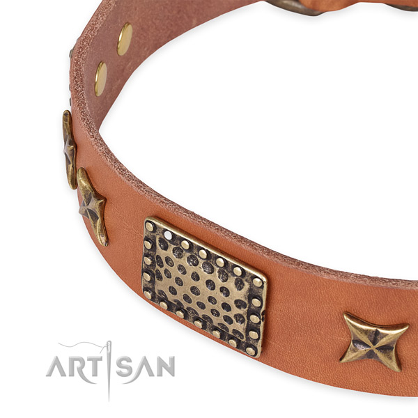 Genuine leather collar with corrosion resistant fittings for your lovely doggie