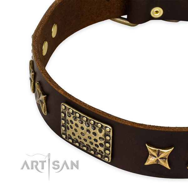 Leather collar with strong buckle for your impressive doggie