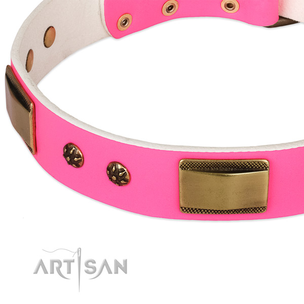 Rust resistant D-ring on genuine leather dog collar for your doggie