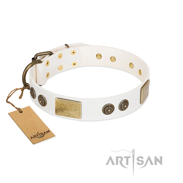 Stylish natural genuine leather dog collar for fancy walking