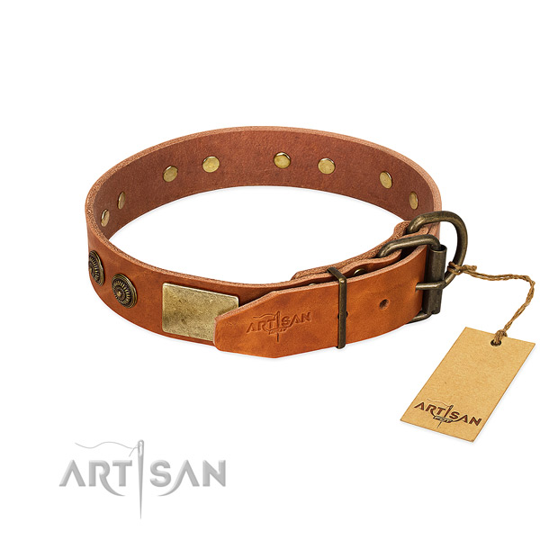 Durable fittings on full grain leather collar for daily walking your dog