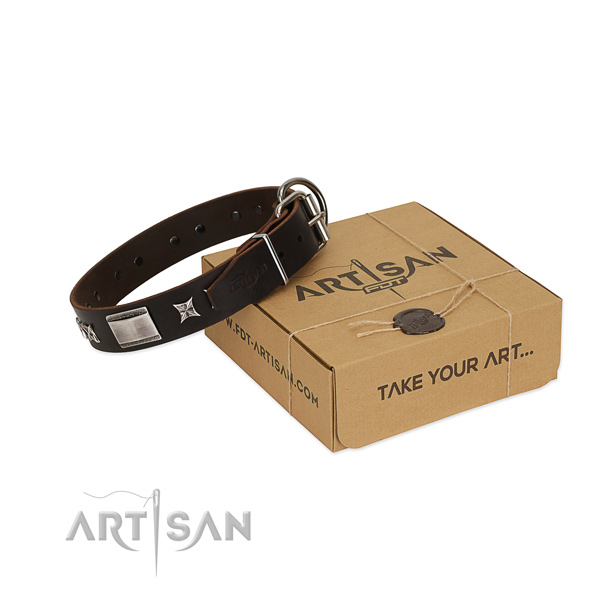 Top quality collar of leather for your beautiful dog