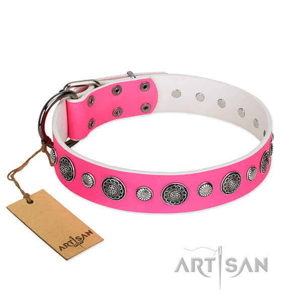 Best quality natural leather dog collar with rust resistant fittings