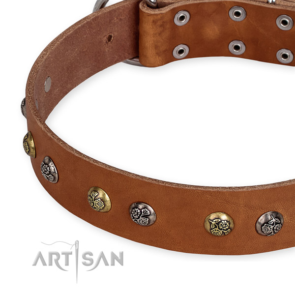 Natural genuine leather dog collar with impressive corrosion proof embellishments