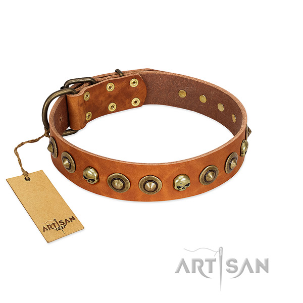 Genuine leather collar with unique embellishments for your canine