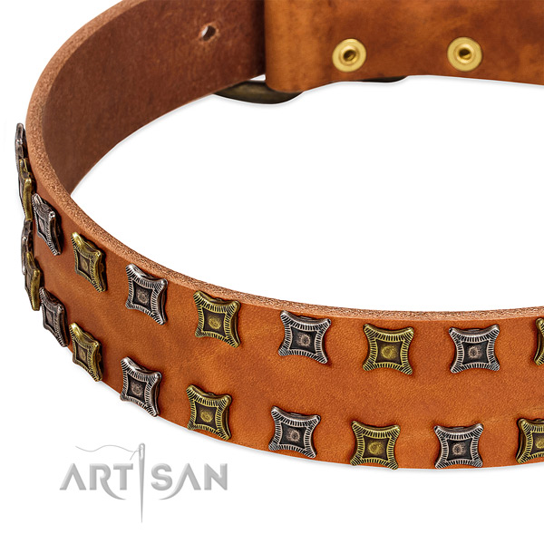 Gentle to touch full grain natural leather dog collar for your impressive four-legged friend