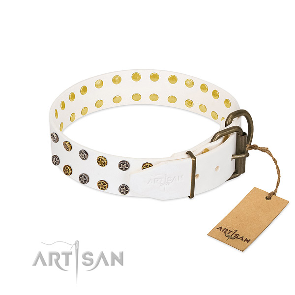 Leather collar with impressive adornments for your canine