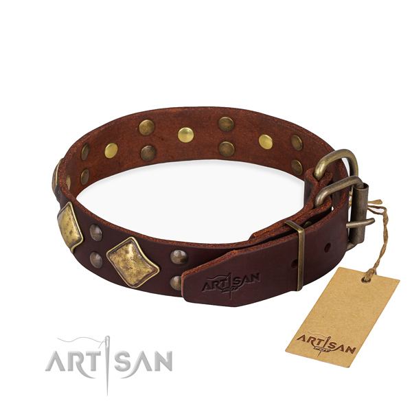 Natural leather dog collar with extraordinary rust-proof decorations
