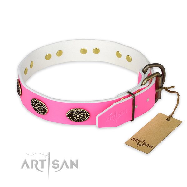 Rust-proof buckle on everyday walking dog collar