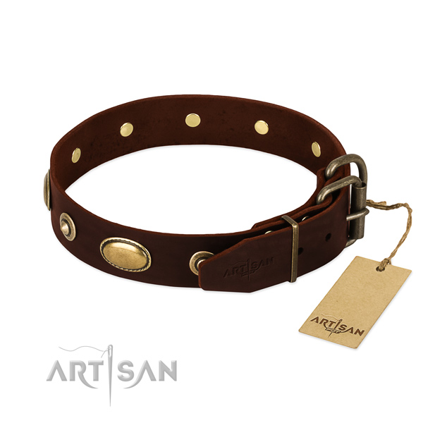 Rust-proof decorations on full grain natural leather dog collar for your canine