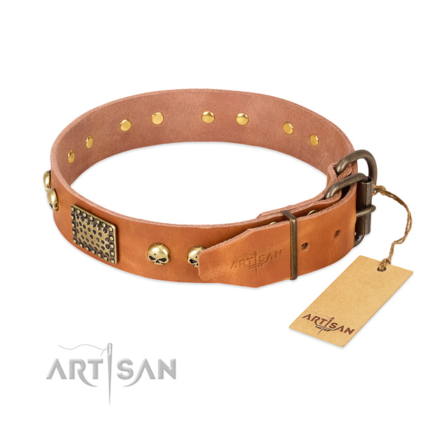 Corrosion proof adornments on basic training dog collar