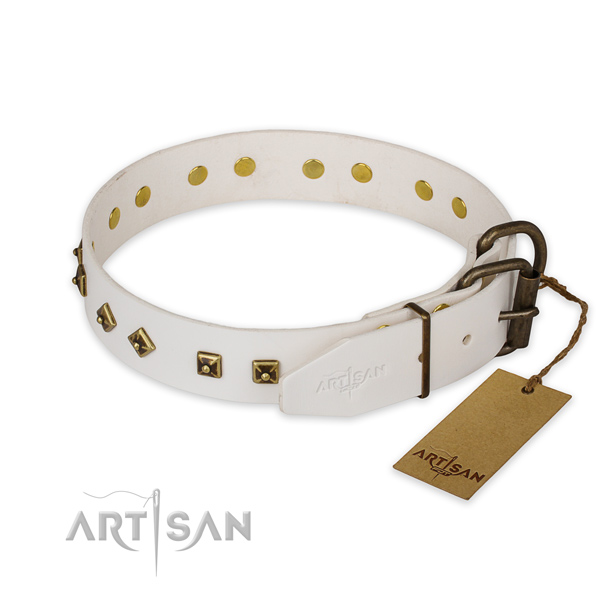 Corrosion proof fittings on full grain leather collar for stylish walking your canine