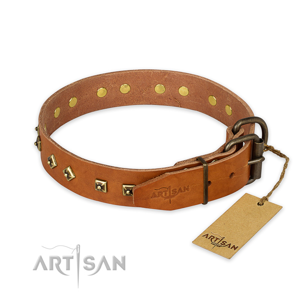 Rust-proof fittings on full grain natural leather collar for everyday walking your pet
