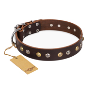 """Golden""n""Silver Luxury"" FDT Artisan Leather Doberman Collar with Engraved Studs"
