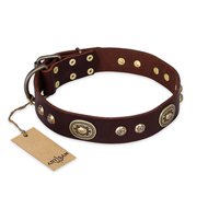 """Breath of Elegance"" FDT Artisan Decorated with Plates Brown Leather Doberman Collar"