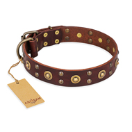 """Caprice of Fashion"" FDT Artisan Brown Leather Doberman Collar with Round Decorations"