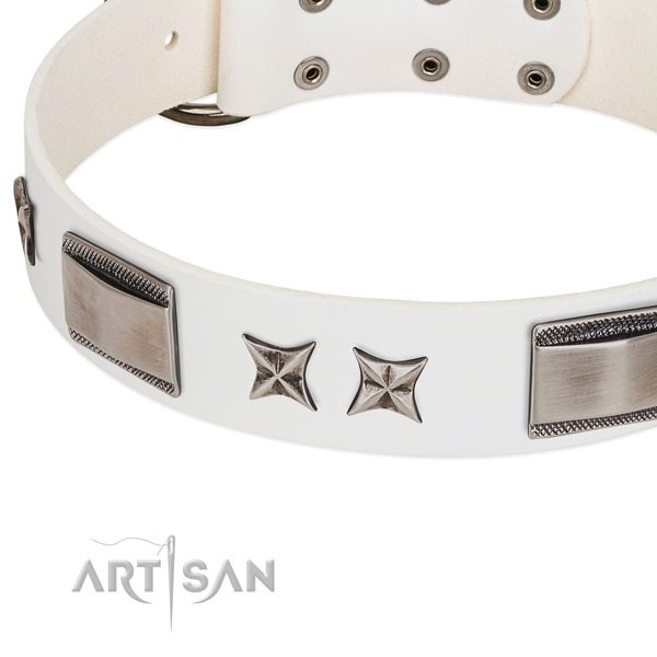 Top notch full grain natural leather dog collar with rust resistant fittings